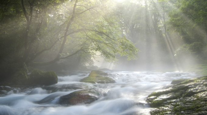 Chapter 1:  Wisdom is Like a River